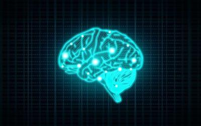 Mieux connaître et améliorer votre mémoire